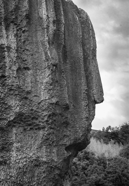 George Washington is here. Stone Forest, Kunming.   ©2015 Deborah Gray Mitchell