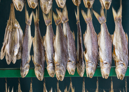 Dried Fish, Macau. ©2015 Deborah Gray Mitchell